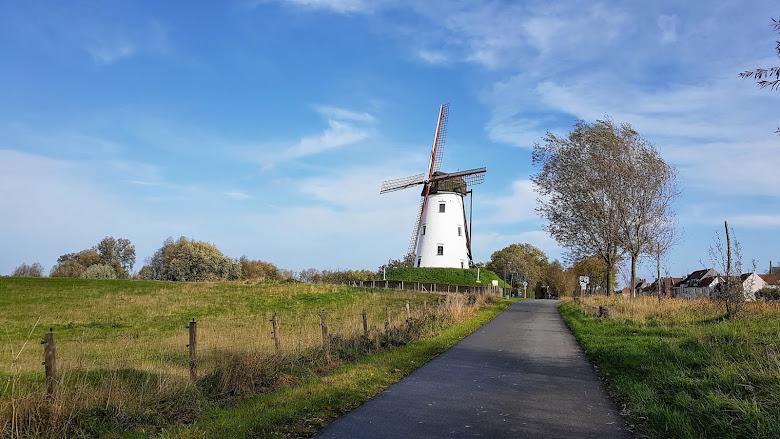 遠處便能看到 Damme 小鎮的風車