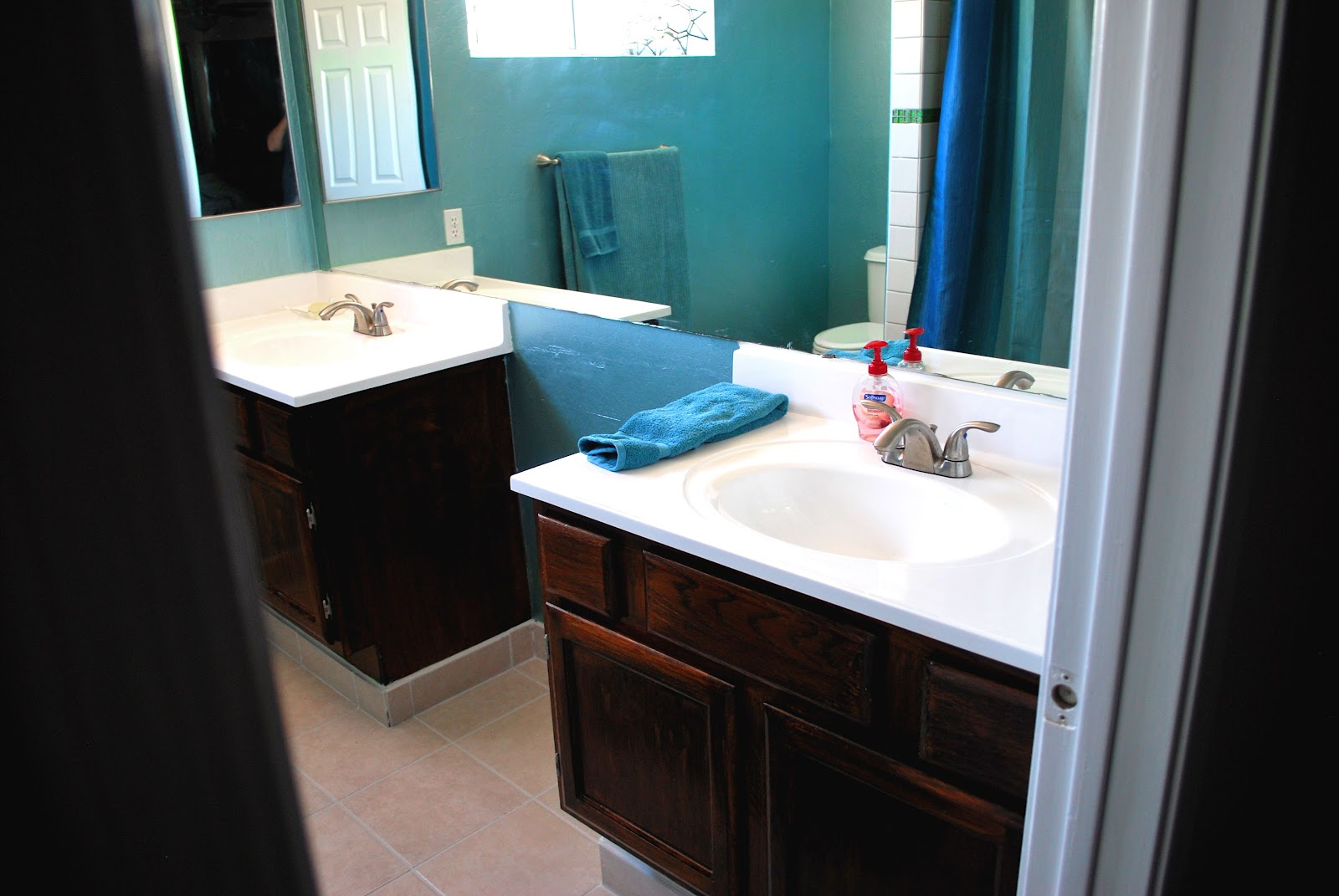 Muffin Cake: Master Bathroom Renovation, The Pictures
