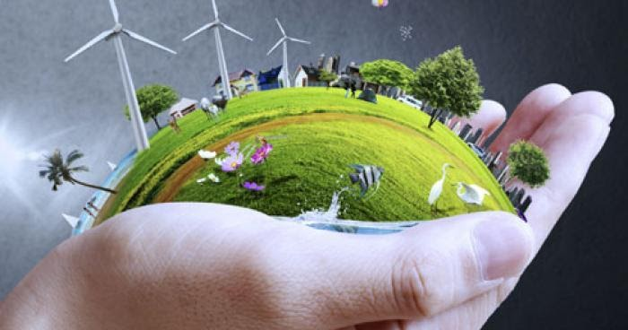 Best ways to save the environment with personal efforts