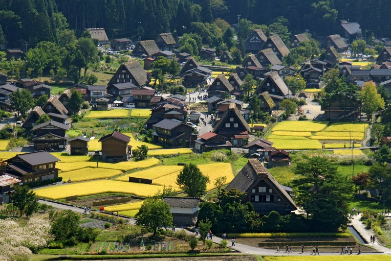Cubiertas vegetales Aldeas sostenibles en Gassho-zukuri Japón
