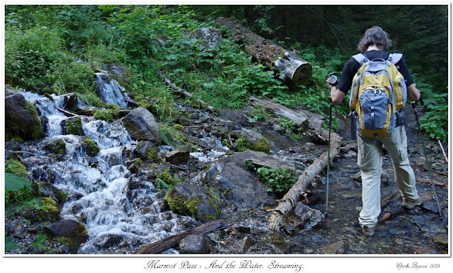Marmot Pass: And the Water. Streaming.