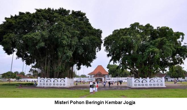 Misteri Dan Mitos Pohon Beringin Kembar Di Alun-Alun Yogyakarta