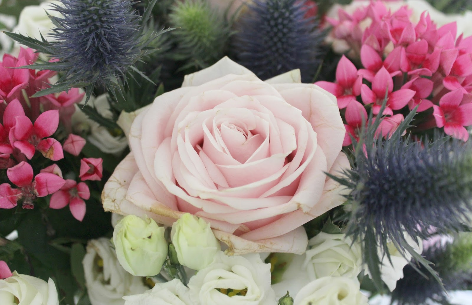 Ok bouquet sophia luxury bouquet tattooed tealady ok bouquet sophia luxury bouquet izmirmasajfo Choice Image