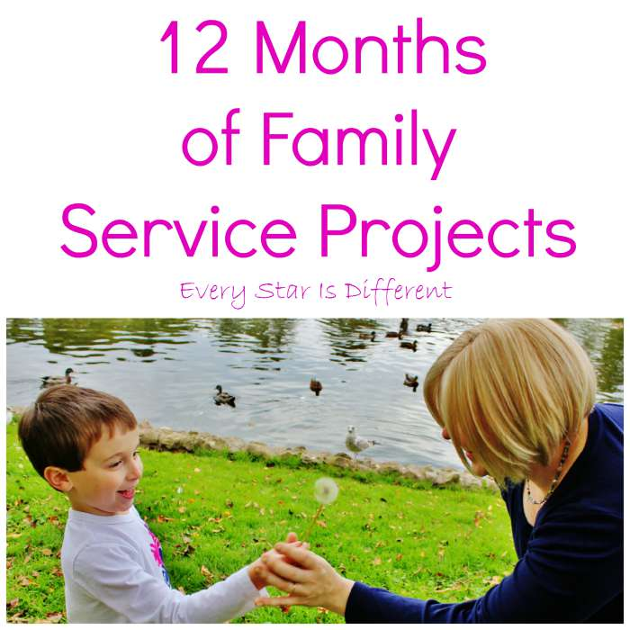 12 Months of Family Service Projects