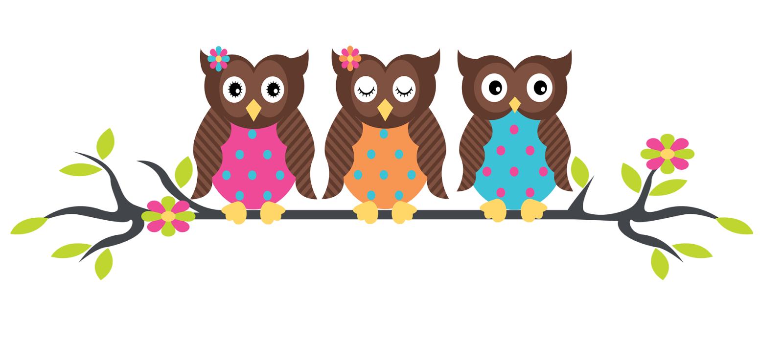 Owl Schools Reading Books Borders Free Wallpaper