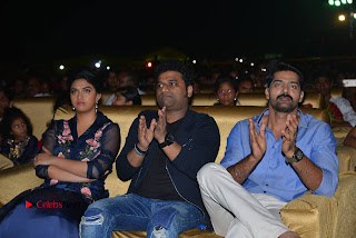 Nenu Local Audio Launch Stills  0201.JPG