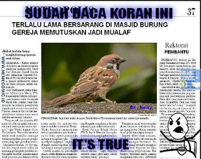 15 Meme 'Burung' Ini Bikin Berpikir yang Iya-iya