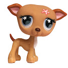 Littlest Pet Shop Tubes Greyhound (#498) Pet