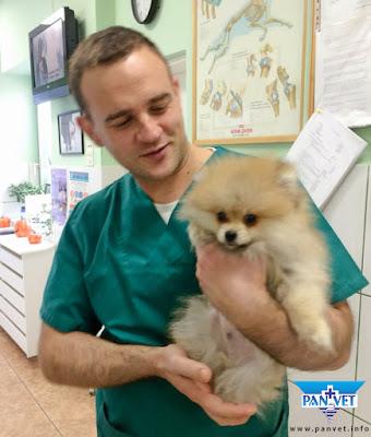 Veterinar Radovan Božičković i pas