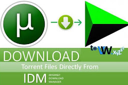 How to Download File Torrent Faster Using IDM Internet Download Manager