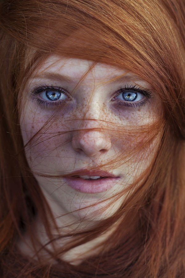 Brown Hair Girls face of America -  Hot Hollywood Girls Actress
