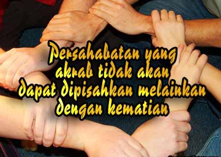 Kata Mutiara Untuk Sahabat Sejati Naqs Dna