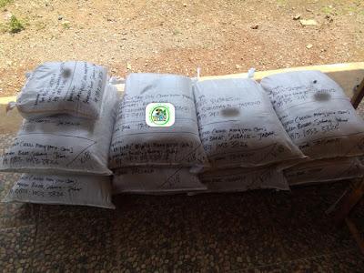 Benih pesanan EUIS SUTARSIH Sukoharjo Jateng.   (Sesudah Packing)