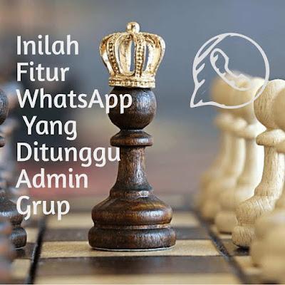 Inilah Fitur WhatsApp Yang Ditunggu Admin Grup