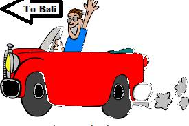 Bali hire private taxi driver
