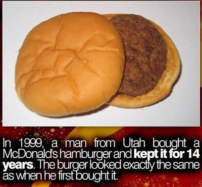 McDonald's hamburger looks the same after 14 years