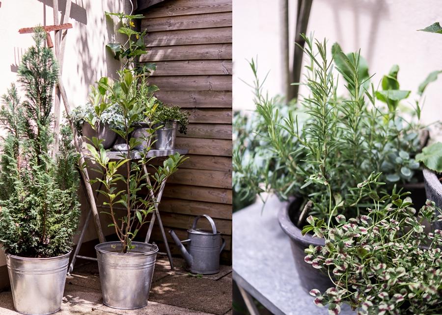 Blog + Fotografie by it's me! | fim.works | Bunt ist die Welt | Garten im Juni 2016 | Kräutergarten in Töpfen auf einem Zinktisch