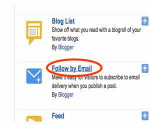 Look for follow by email