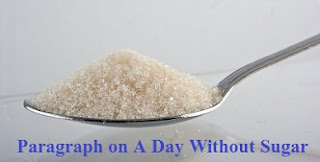 Paragraph on A Day Without Sugar