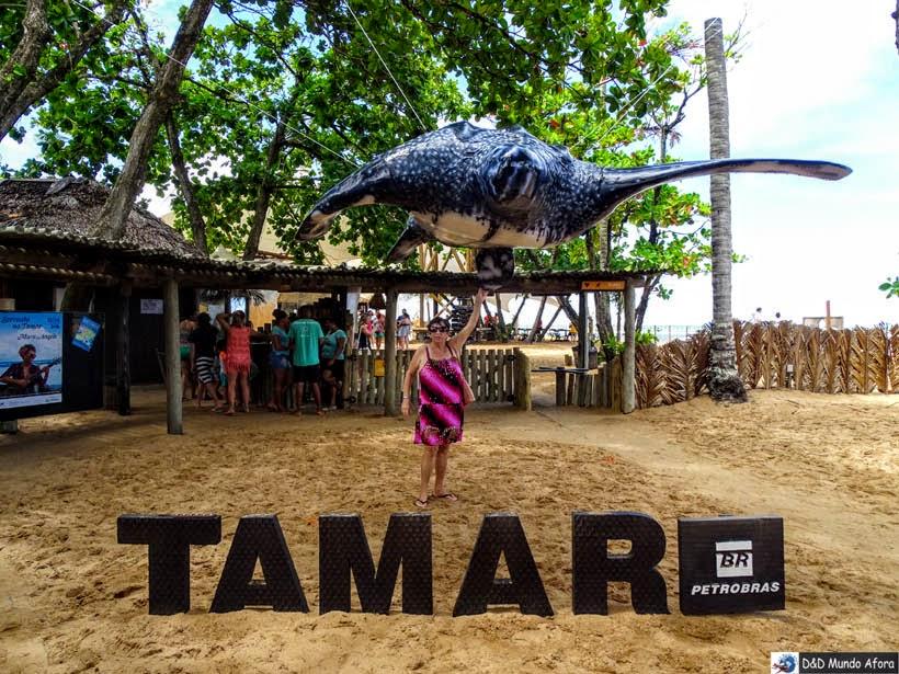 Projeto Tamar Praia do Forte (Bahia)