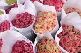 bunga potong