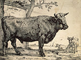 Bull by Paulus Potter - Animal Art Prints from Hermitage Museum