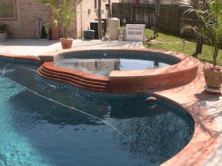 Custom Free Form Inground Pools 12