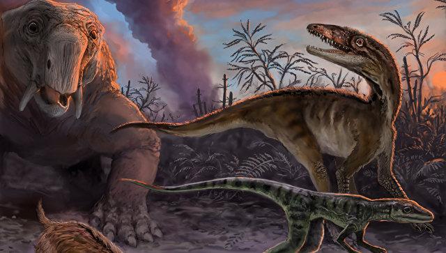 Ученый назвал время начала следующего массового вымирания животных