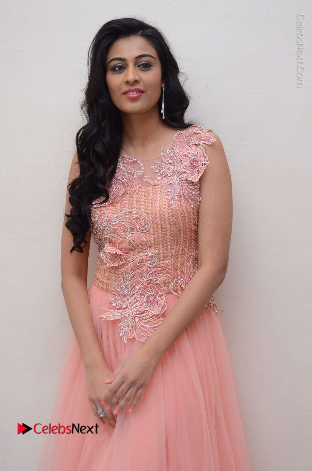 Neha Hinge Stills in Pink Long Dress at Sri Valli Teaser Launch