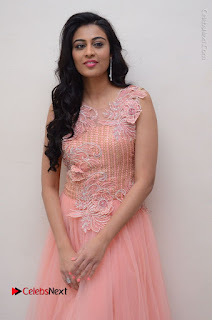Actress Neha Hinge Stills in Pink Long Dress at Srivalli Teaser Launch  0047.JPG