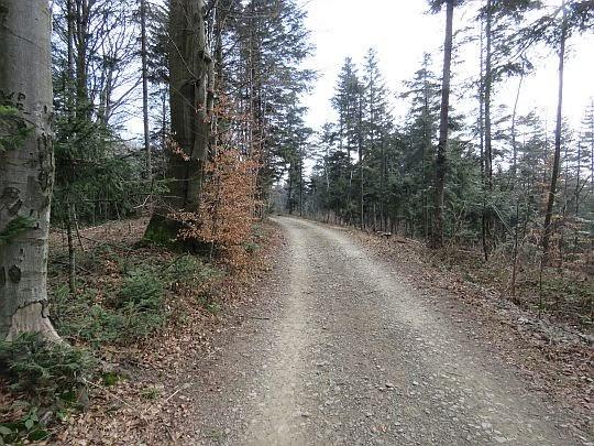Grzbietowa droga na Kamionną.