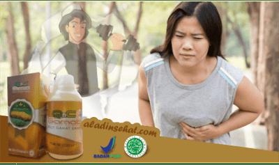 Penyebab Penyakit Lambung Yang Berbahaya Bagi Tubuh Manusia