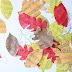 Φύλλα γεμάτα νότες