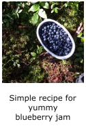 recipe for yummy blueberry jam