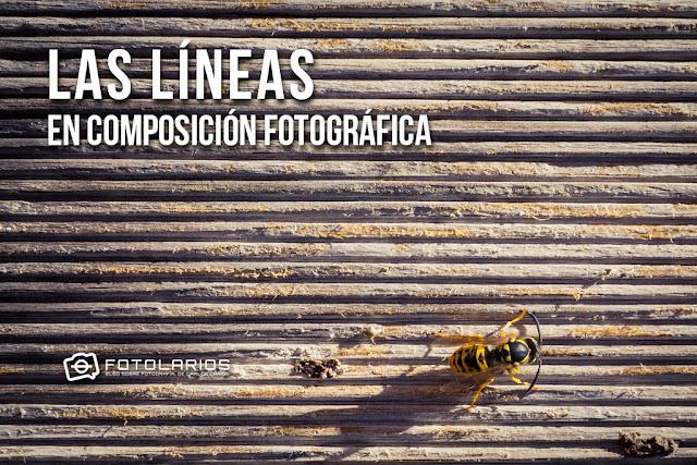 Las líneas en composición fotográfica