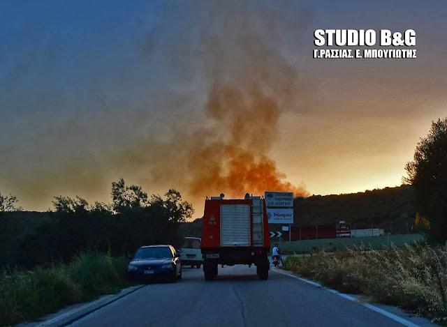 Πολύ υψηλός κίνδυνος πυρκαγιάς στην Αργολίδα για την Τετάρτη 02 Αυγούστου