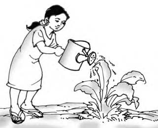 Mewarnai Menyiram Bunga Warsio