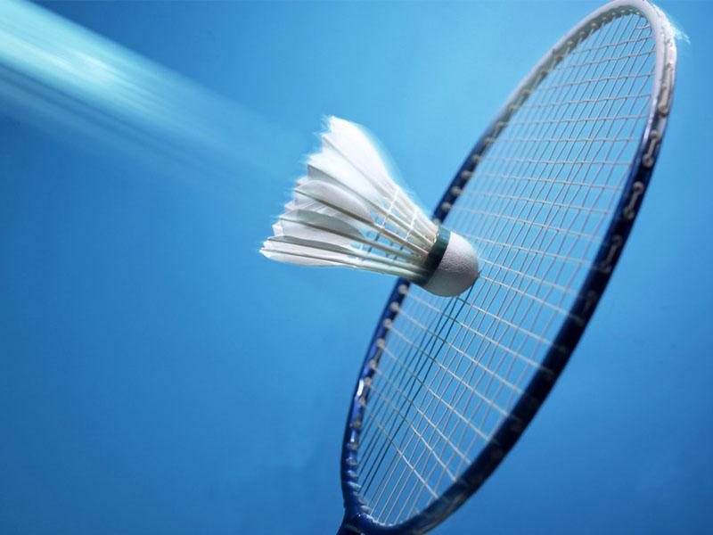Bulu Tangkis/Badminton