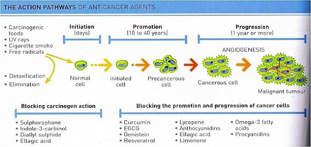 Atomic Bliss Natural Therapies Against Cancer