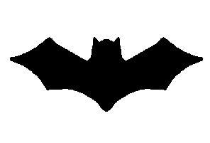 Crazy, Kooky, Crafts: Bat Mobile