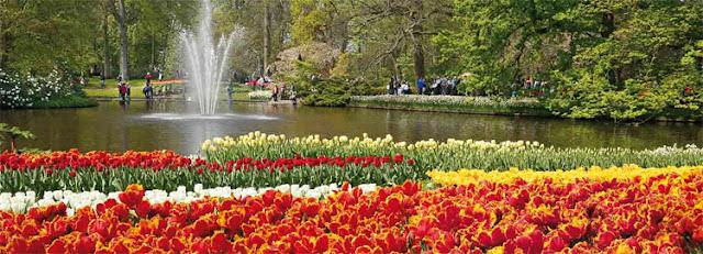 Dự án Lavila nổi bật với công viên hồ cảnh quan lấy cảm hứng từ công viên Keukenhof Hà Lan.