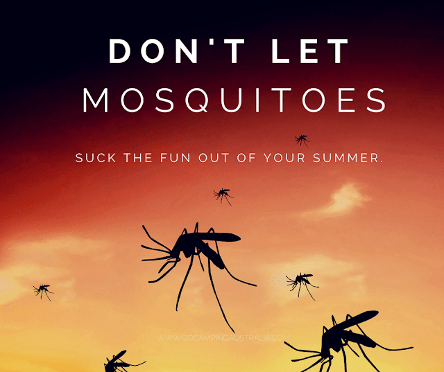 Summer camping with mosquitoes - win from Hovex