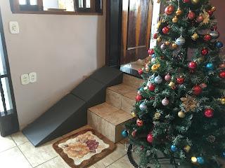 rampa de sobrepor na escada para cães com dificuldade de locomoção