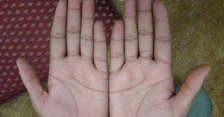 important yog in palmistry