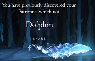 Delfino di Federica