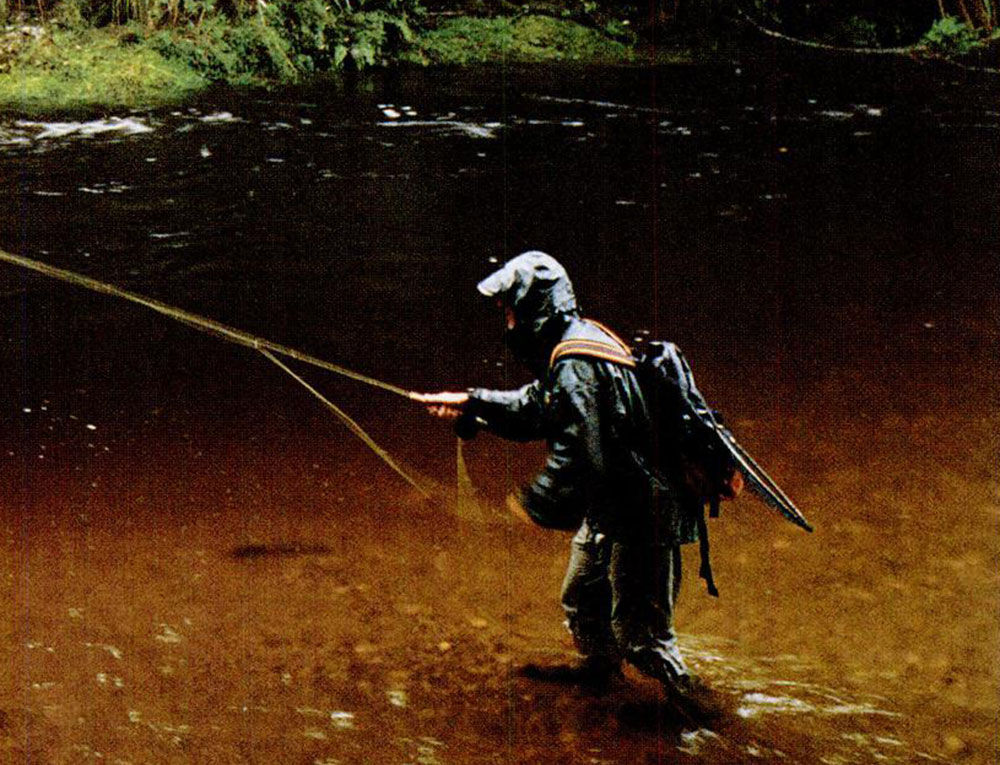 B todd bailey idaho blogger the three basic types of for Types of fly fishing flies