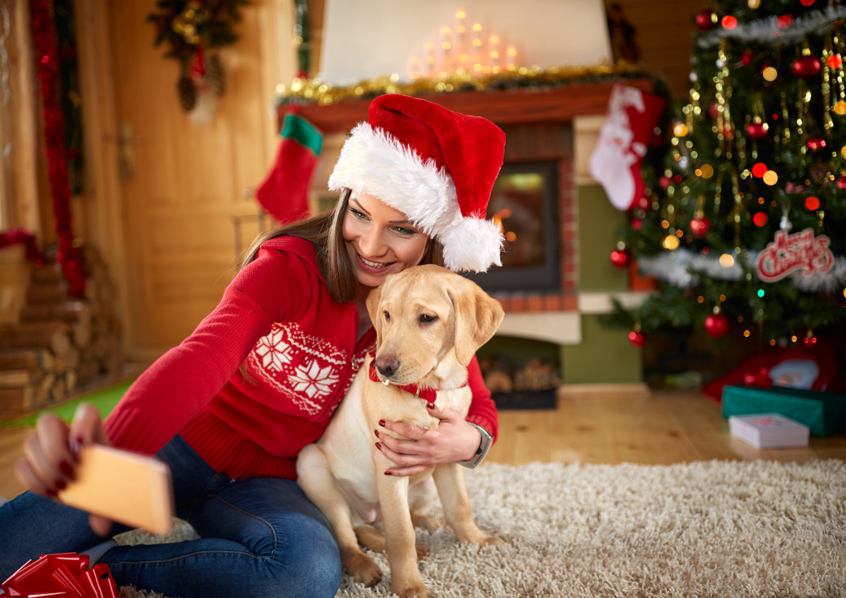 gifts for pet lovers. Here Are Our Picks Of Christmas Presents For Dog Lovers This Year. As Is The Season Giving, We Selected A Few Gifts Pet