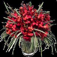 Vaso de Flores vermelhas em png