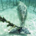 """Estos buzos encontraron un horrible """"zoológico"""" con animales enjaulados y atados en el fondo del mar."""