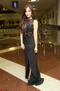 Angela Krislinzki in Transparent Black Gown at Rogue Movie Teaser Launch 1st March 2017 008.JPG